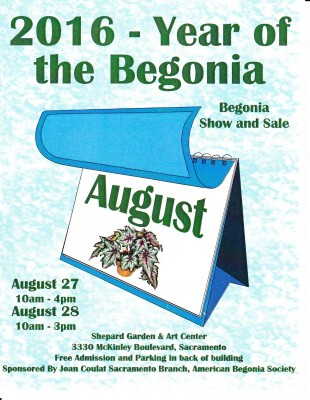 Year Of The Begonia Presented By Joan Coulat Sacramento Branch American Begonia Society