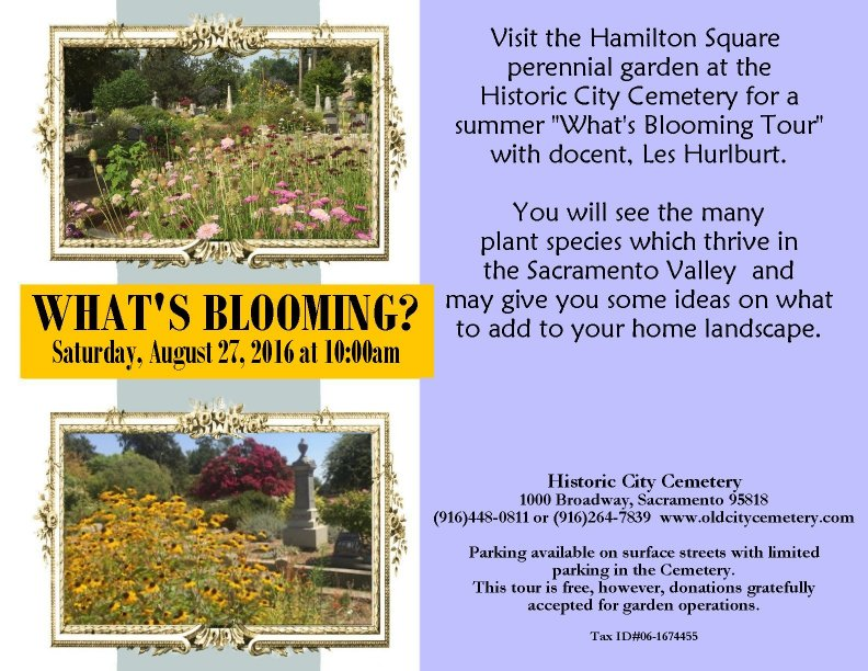 primary-What-s-Blooming--Garden-Tour-1471