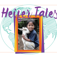 primary-Heifer-Tales--Uplifting-Stories-From-Around-the-World-1482208120