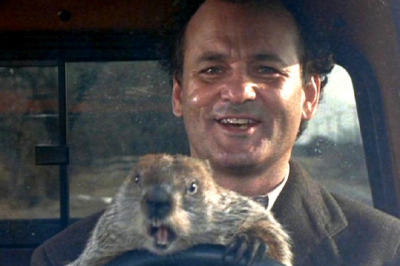 primary-GROUNDHOG-DAY-1484347888