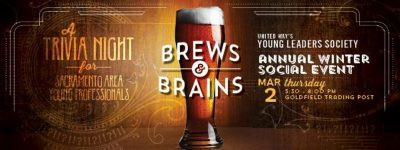 yls-brews-and-brains