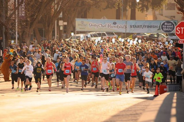Photo courtesy of the Getty Owl Run and Walk