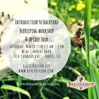 primary-Intro-to-Backyard-Beekeeping-Workshop---Apiary-Tour-1489159974