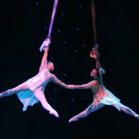 National Acrobats and Martial Artists of China