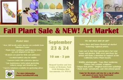 Fall Plant Sale and New Art Market