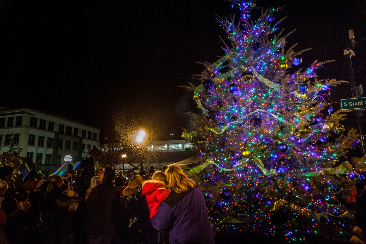 City Of Roseville Christmas Tree Lighting Presented By