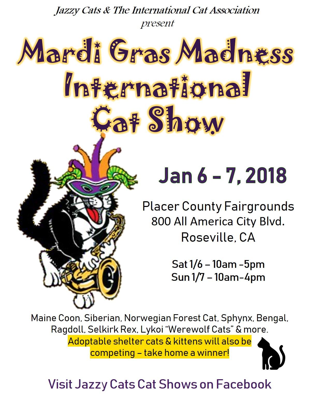 Jazzy Cats International Cat Show | Festival | Sacramento365
