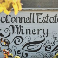 Girl's Night Out at McConnell Estates Winery