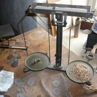 Hands on History: Catch Gold Fever