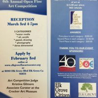 Open Fine Art Competition