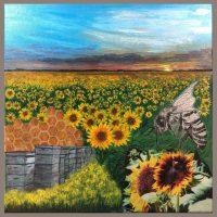 Cathie James-Robinson Solo Exhibition