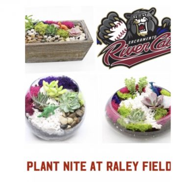 Raley Field Plant Nite