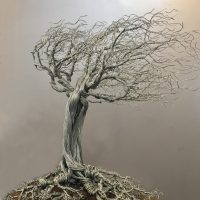 Triumphant Trees: Dressed in Leaves I Reach Into The Sky