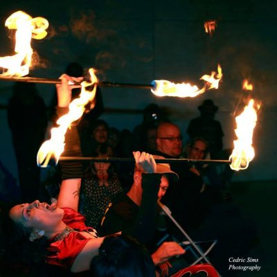The 11th Annual Fire Spectacular: Walk on the Wild Side