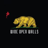 Wide Open Walls Interview Series