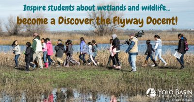 Discover the Flyway Docent Training