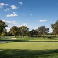 9th Annual Golf Fore Trees Tournament