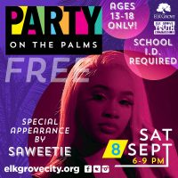 City of Elk Grove Party on the Palms