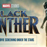 Moonlight Movie: Black Panther