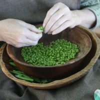 Hands on History: Frontier Farm-to-Fork Event