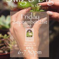 Swig and Dig: Seasonal Succulent Garden