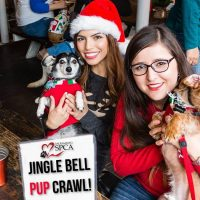 Sacramento SPCA's Jingle Bell Pup Crawl