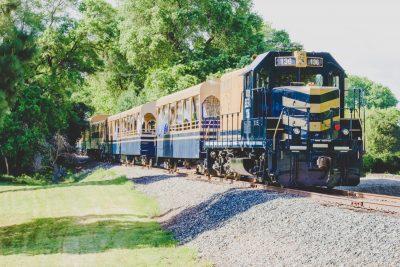 Sacramento RiverTrain Excursion