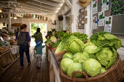 Soil Born Farms Farmstand (April-May)