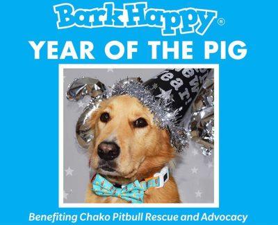 BarkHappy Sacramento Year of the Pig Pawty