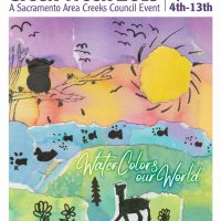 Sacramento Creek Week: Water Colors Our World