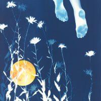 Botanical Blueprints: Intro to Cyanotype