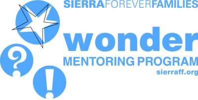Wonder Mentoring Program