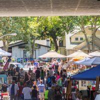 Sacramento Antique Faire (June)