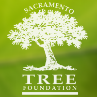 Sacramento Tree Foundation Tree Hero Awards