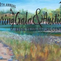Spring Gala and Art Auction