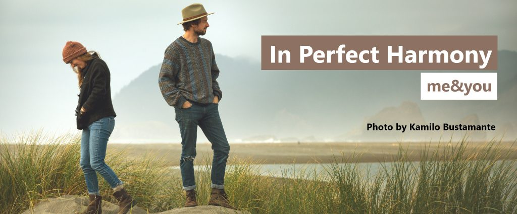 me&you: In Perfect Harmony