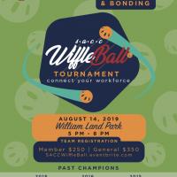 Sacramento Asian Pacific Chamber of Commerce Wiffle Ball Tournament
