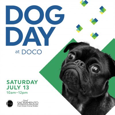 Dog Day at DOCO presented by Downtown Commons (DOCO)   Festivals