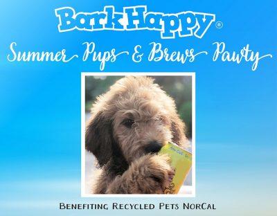 BarkHappy Sacramento: Summer Pups and Brews Pawty