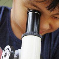 Homeschool Science: Energy Waves