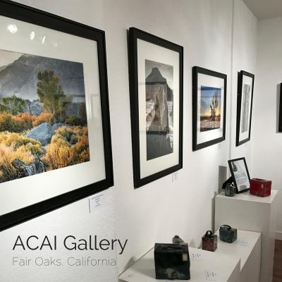 Allied Ceramics Art Institute Studios and Gallery (ACAI Studios & Gallery)