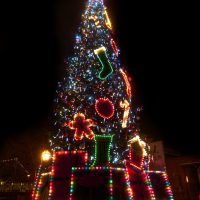 Old Sacramento Waterfront Tree Lighting Ceremony