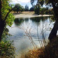 Sacramento Water Festival