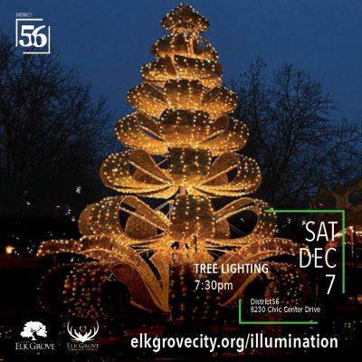 Illumination Holiday Festival