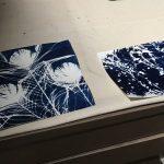 Cyanotye Prints
