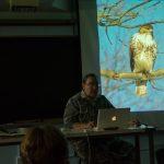 Birds in Davis: The Inside Scoop