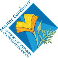 Open Garden at the Horticulture Center