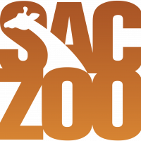 ZooZoom (Cancelled)