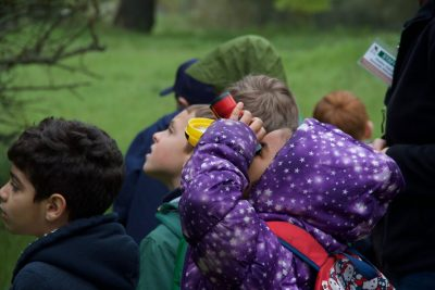 Spring Nature Camps