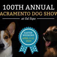 Sacramento Dog Show (Cancelled)